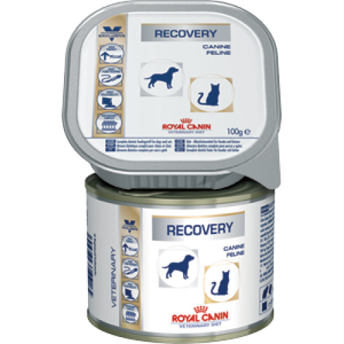 Royal Canin Recovery, диета для собак и кошек в период анорексии, выздоровления